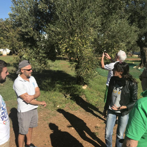 Gay Foodies Tour Olive Oli experience
