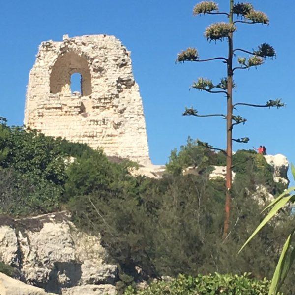 Torre Del Orso