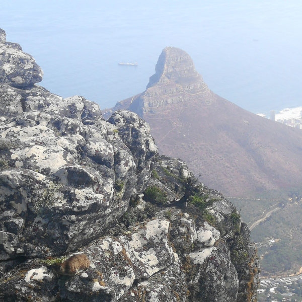Gay Cape Town Tour Lions Head